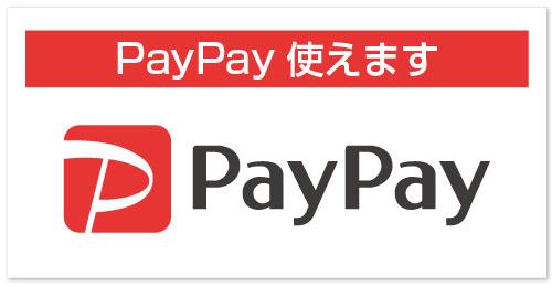 paypay logo - 特殊小型(水上バイク)免許